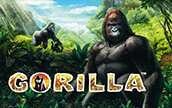 Игровой автомат Gorilla Горилла