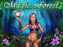 Онлайн-автомат на настоящие деньги Magic Forest